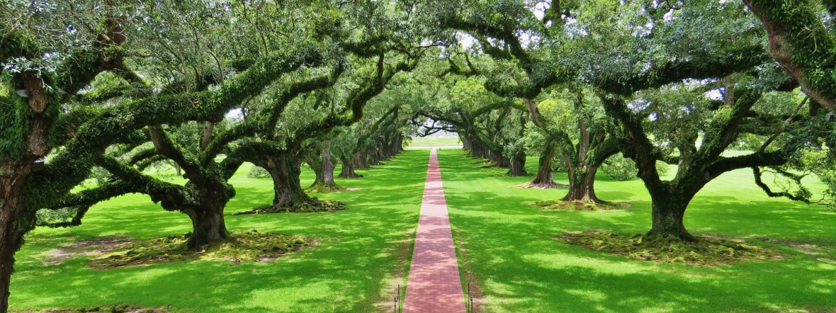 Oak Alley Plantation Restaurant Amp Inn